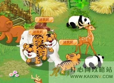 开心001牧场 原来老虎可以群养